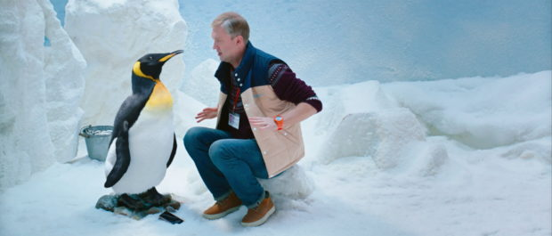 svetlakov-and-pingvin