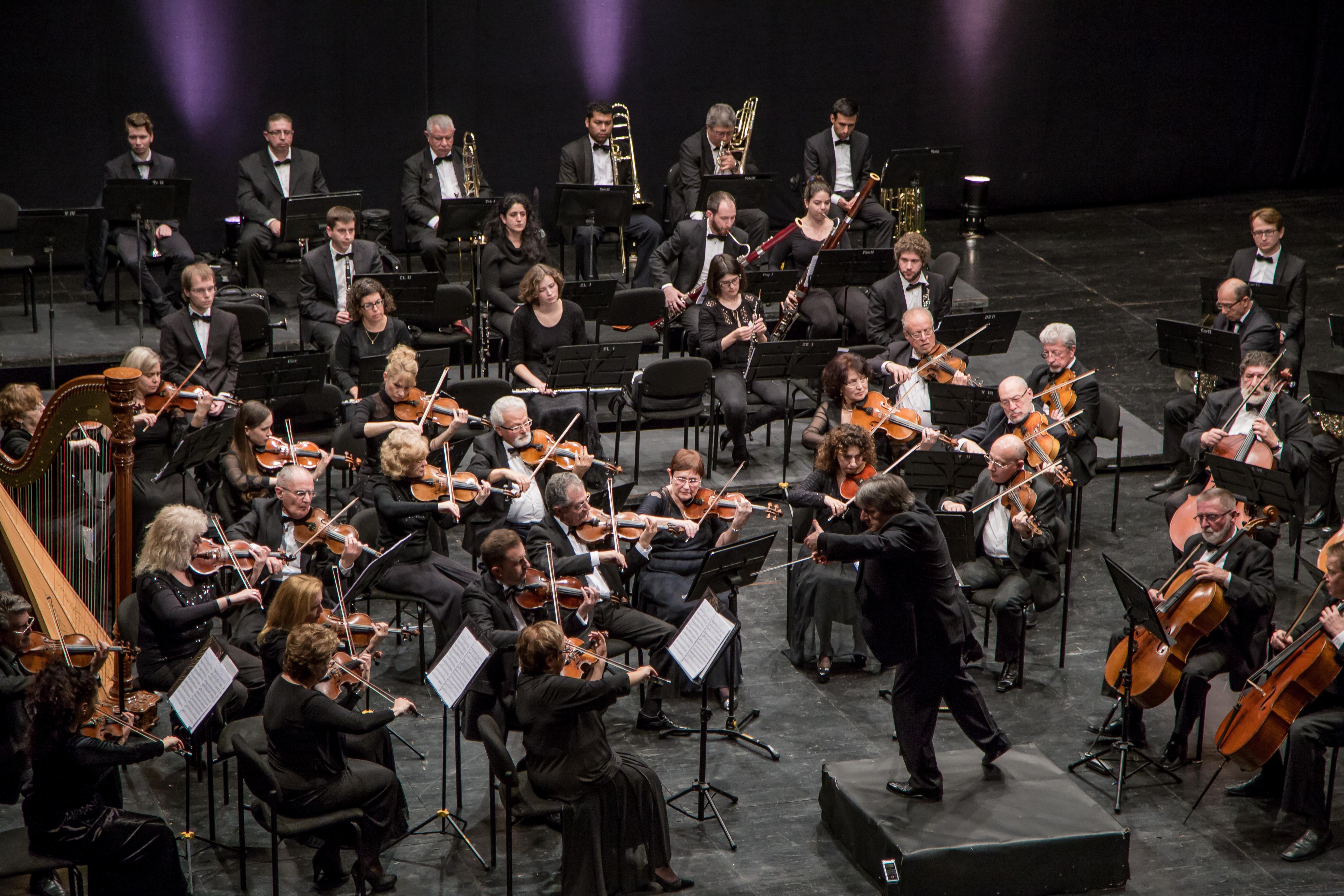 Ашдодский симфонический оркестр под управлением Вага Папяна. Фото - Марк Жолковский