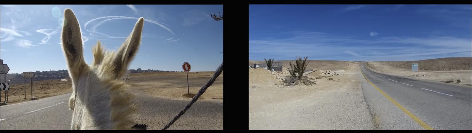 סטילס מתוך וידאו קרדיט צילום דן פרבדוף