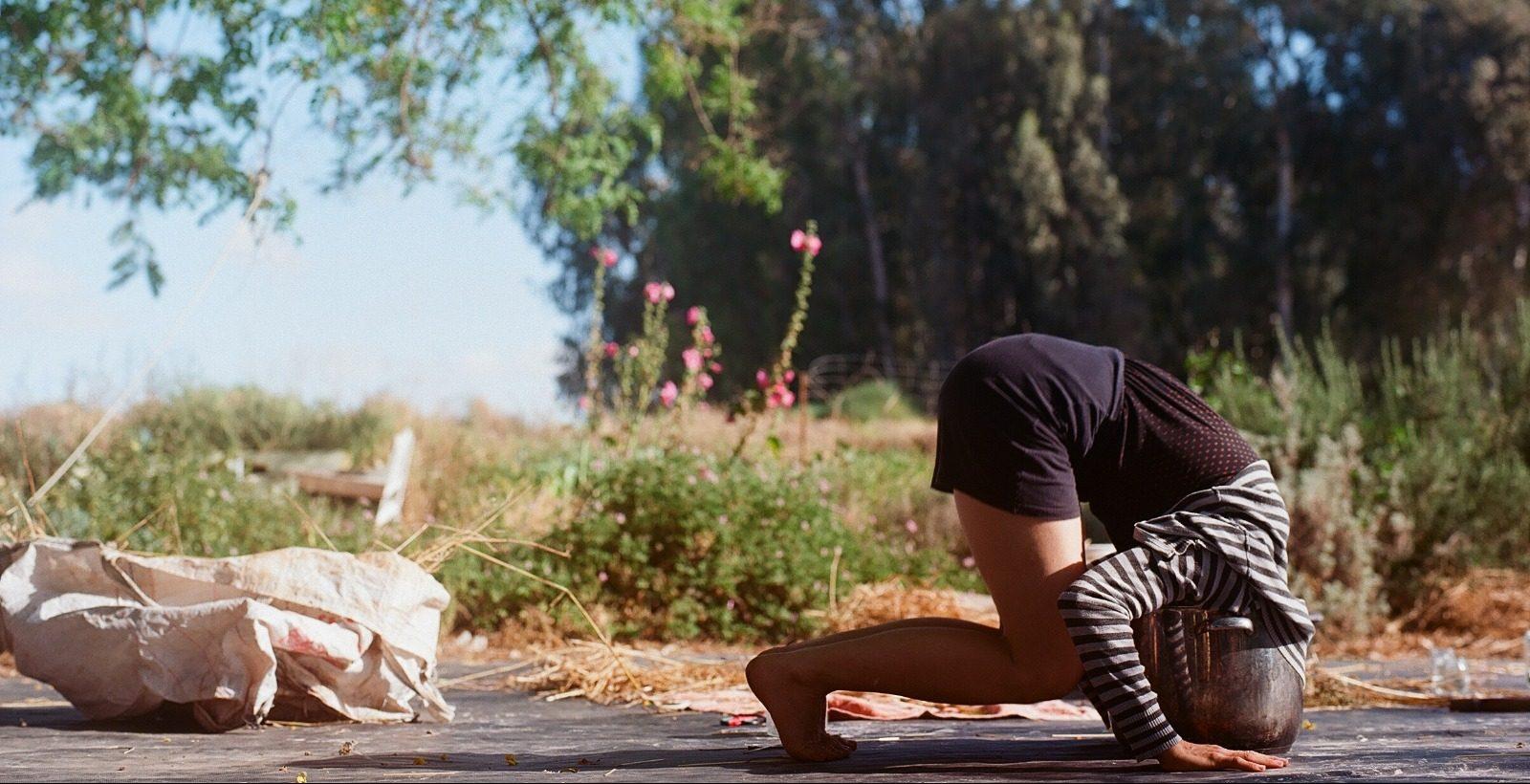 Шдемама. Фото - © Омер Месингер. הות אמן ביער המאכל שדמאמא. צילום - עומר מסינגר